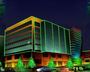 远洋大酒店LED亮化
